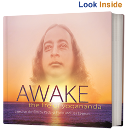 AWAKE-look-inside