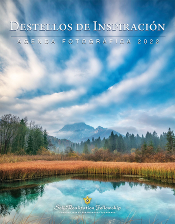 IR-2022-Spanish-Front-Cover