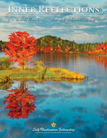 IR21_E_Cover_4854_J6272.indd