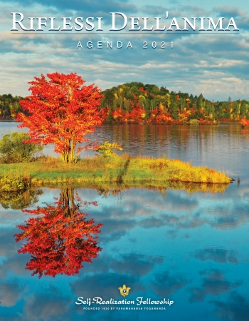 IR21_I_Cover_4854_J6272.indd