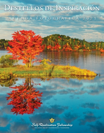 IR21_S_Cover_4854_J6272.indd