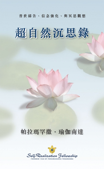 Metaphysical-Meditations—Chinese-Traditional-front-cover